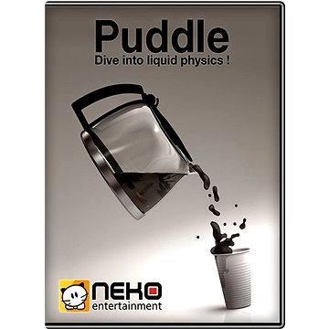 Puddle (251940)