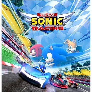 Team Sonic Racing (PC) Steam DIGITAL (764968)
