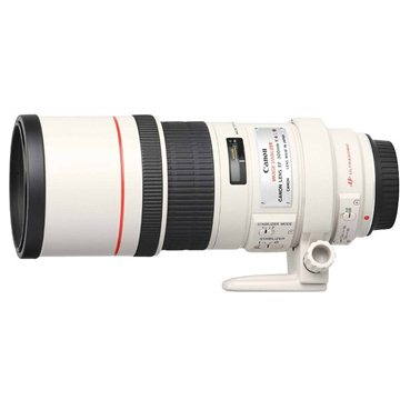 Canon EF 300mm F4.0 L IS USM (2530A021)