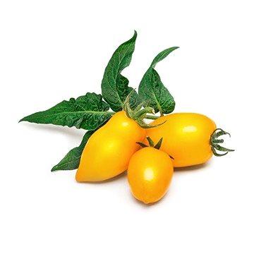 Véritable Lingot Mini žlutá rajčata (VLIN-L5-Tom053)