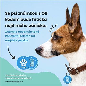 Unikátní psí známka se jménem pejska, QR kódem a telefonním číslem. (RADOST00000X4)