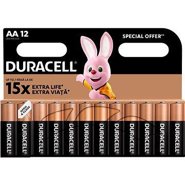 Duracell Basic AA 12 ks (10PP100002)