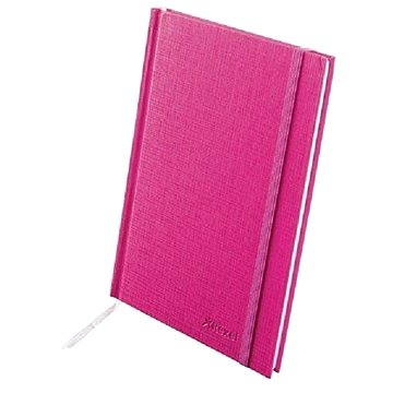 REXEL Joy růžová A4 linkovaná (2103995)