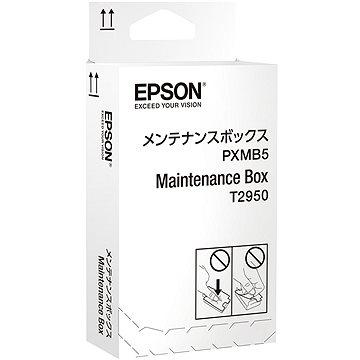 Epson Maintenance Box pro WorkForce WF-100W (C13T295000)