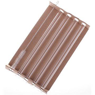 TECHNOSKLO Sada skleněných brček smoothie 4 ks a kartáček (632634012203/S)