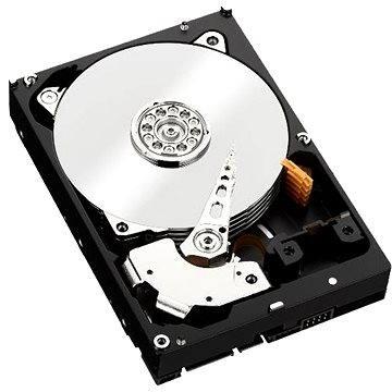 Lenovo ThinkServer 3.5 4TB 7200 ot. 6G NL SATA (0C19505)