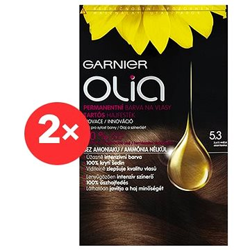 GARNIER Olia 5.3 Zlatá hnědá 2×