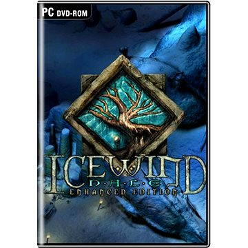 Icewind Dale Enhanced Edition (8595071033603)