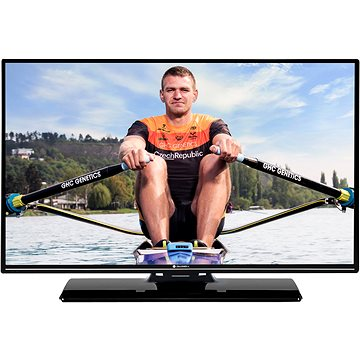 "43"" Gogen TVF 43P525T (GOGTVF43P525T)"